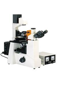 China XDY-1 Fluorescence microscope China Manufacturer on sale