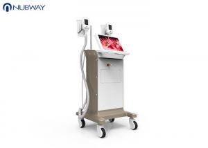 China -15oC low temperature cool sculpting cryoliplysis body slimming  weight loss machine on sale