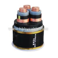 XLPE / PVC Insulated Submarine Power Cable