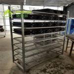 Greenhouse Garden Push Cart