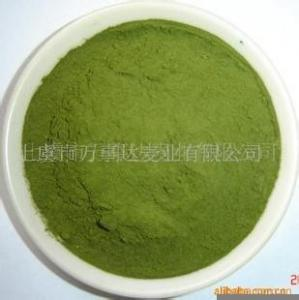 China Health Food Supplement Alfalfa Grass Extract Powder Green on sale