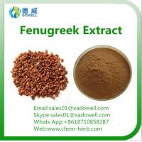 China 100 Natural Top quality Natural Organic Fenugreek seed Extract on sale