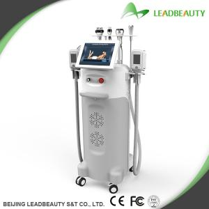 Most professional cryolipolysis therapy machine with Cryo