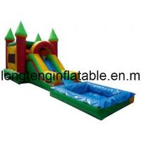 Inflatable Slide with Pool/Inflatable Water Slide /Inflatable Water /Inflatable Toy (LT-SL-0020)