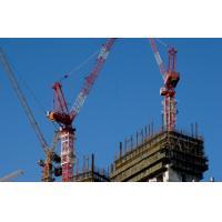 Building Crane Luffing Jib Max. Load: 10t QTZ160
