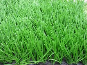 China Anti - Fire Soccer Artificial Grass Oliver Green For Sport Ground on sale