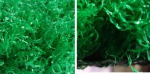 China Best Soft Fake / Synthetic / Artificial Grass Lawn for Homes, Playground, Hospital, Roof on sale