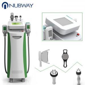 China cryolipolysis weight reduction machines cryolipolysis vacuum cavitation vacuum rf cryolipolysis machine on sale