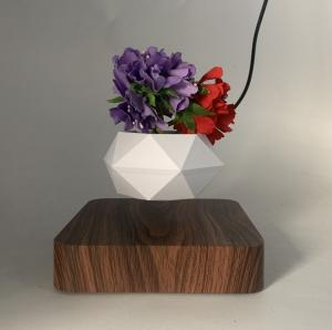 China new hotsale magnetic levitation floating bottom air bonsai plant tree pot on sale
