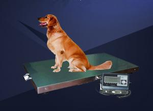 China SupplyChina Pet special stainless steel weight scale for dog with best price weighing scale used for dog on sale