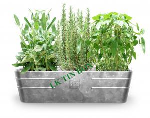 China Metal Tin Bucket Rectangular Flower Vegetables Plants Herbs Growing on sale