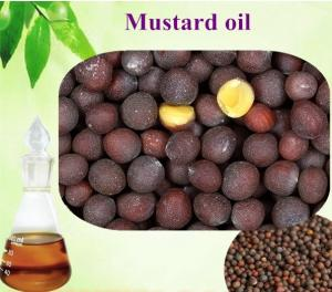 China New product 2018 Mustard Oil plant essential oil essence on sale