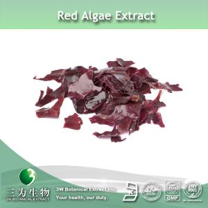 China Red Alga Extract on sale