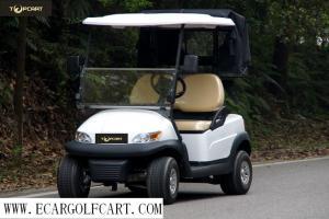 China High End 2 Seater Golf Cart , Electric Powered Golf Carts With Rear Cover on sale