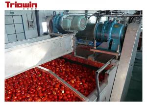 China 220V/380V Small Scale  Tomato Paste Processing Line With Sorting Section on sale