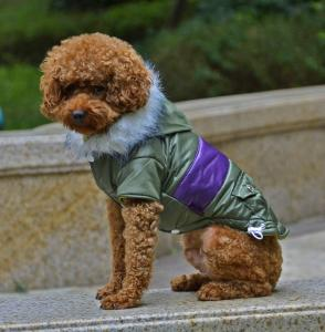 China Fashion dog clothes for winter jacket dog apparel on sale