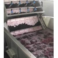 China Blueberry/ strawberry/blackberry/red raspberry  processing plant/machinery on sale