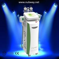 China High performance NUBWAY best quality cryolipolysis weight loss beauty equipment on sale