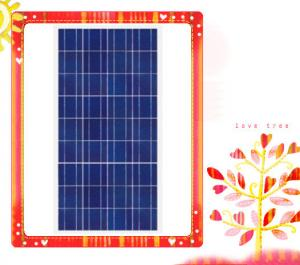 China 156*78 small panel solar 70w polycrystlline silicon solar panel for home use power system on sale