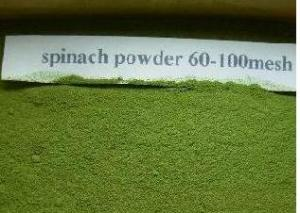 China Quality 100% Pure  Spinach Powder Green Food Nutrtional add-in Vegetable China Expo on sale