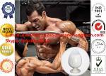 434-22-0 Nandrolone base Steroid Hormones Powder 99% Legit Nandrolone Powder