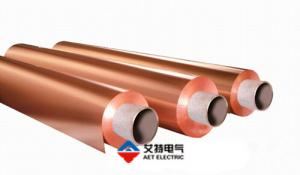 China DSFlex-600 Adhesive-Less Fccl Flexible Copper Clad Laminate on sale