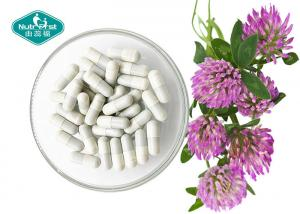 China Organic Dietary Red Clover Extract , Trifolium Pratense Extract For Menopause Support on sale