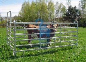 China Galvanised Portable Livestock Fence Panels , Steel Tube  Horse Fence Panels For Dairy Farm on sale