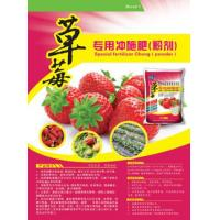 15-5-15 Root cell divHarmless Strawberry Dedicated Water Flush Vegetable Garden Fertilizer