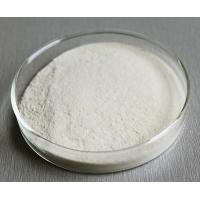 China White Food Grade Enzymes Powder Remove Hidden Fluff High Purity Water Soluble on sale