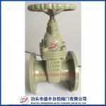 DN65-DN300 ductile iron resilient seated Gate Valve factoey with high quality