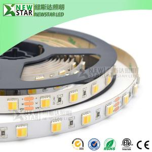 China CCT 2in1 5050 2 chips in one 12v 24v led CCT flexible strip WW+W dimmable dual white CCT adjustable led strip lights on sale