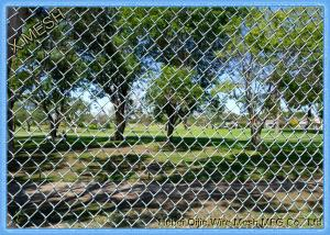 China Easily Install Chain Link Fence Fabric Green Color PVC Coated Materials on sale