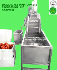 China Small Size tomato paste processing line small scale tomato paste factory mini tomato production line Italy Technology on sale