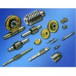 Stainless Steel/Bronze/Brass Custom Worm Gear