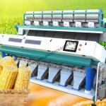 Corn Optical CCD 99% Food Sorting Machine