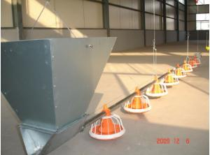 China Poultry Equipment Supplier on sale
