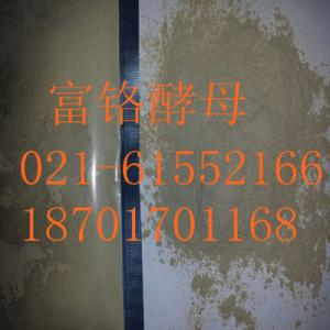 China Nutritional additive chromium rich yeast character: yellowish powder content 0.2% on sale