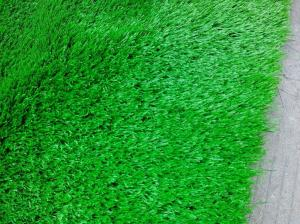 China 8800DTEX/10500 clusterm2/Grass Fiber Size Outdoor Laying Artificial Turf Football on sale