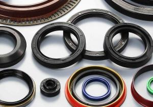 China James Walker Fs Casing Tubing Seal for Oil and  Gas/Seal Kit Hitachi Ex200-1 Boom on sale
