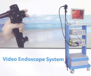 China High Definition Video Endoscopy System Gastroscopy / Colonoscopy In One Set on sale
