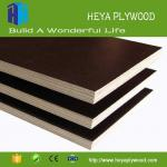 Wholesale black coated b2 grade birch american plywood quotation 18mm