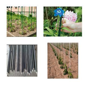 Quality Pultrusion Fiberglass Plastic GRP Nursery Stakes , FRP Tree Stakes  / Garden Stakes For Sale ...
