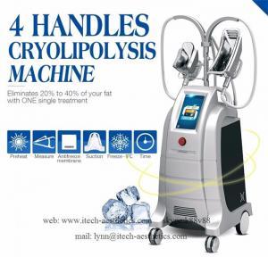 China Innovative Cryolipolysis Freeze Fat Reduction, 4 Handles Work Simultaneously Cryotherapy Fat Freezing Machine on sale