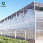 Exhibition Pc Board 3.0m Polycarbonate Greenhouse