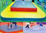 Durable Wushu Platform Gymnastics Training Mats Competition Sanda Mat