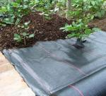 100gsm Flower Bed Weed control Matting