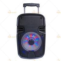 "Customized 8"" Speaker Box Enclosure / Powered DJ Speakers CE Approve"