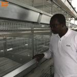 Design H Type Good Quality Automatic Chicken Layer Cage System
