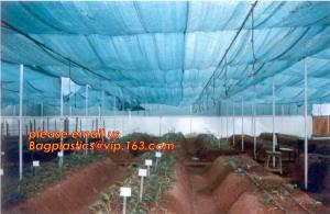 China agriculture anti insect net on roll insect proof mesh for greenhouse,Greenhouse Anti Insect Netting /Agriculture Netting on sale